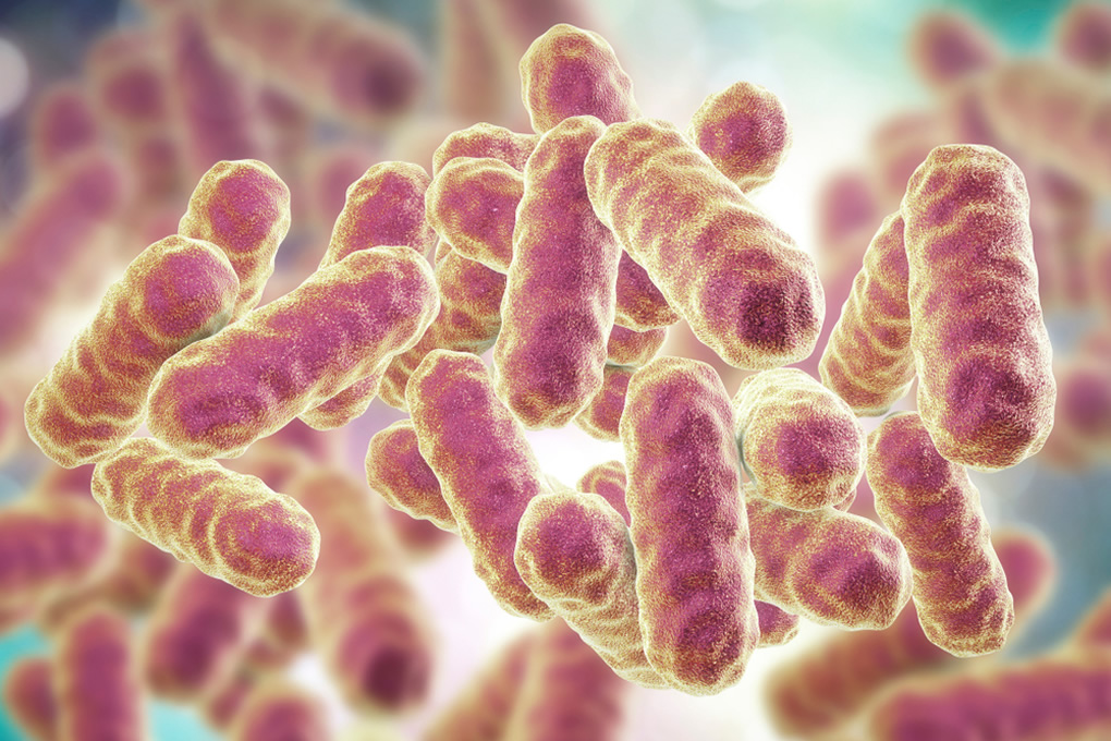 Your Microbiome…much more than just some friendly bacteria